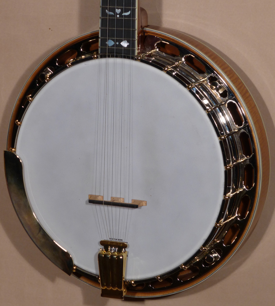 Steve Streeper Sun Valley 5-String Resonator Banjo Product